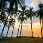 Surf City El Salvador, un destino paradisíaco y seguro